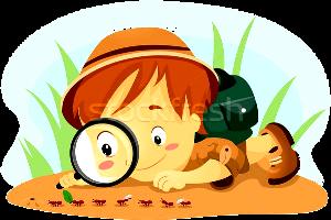 1765169_kid-муравьев-ребенка-науки-мальчика-животные